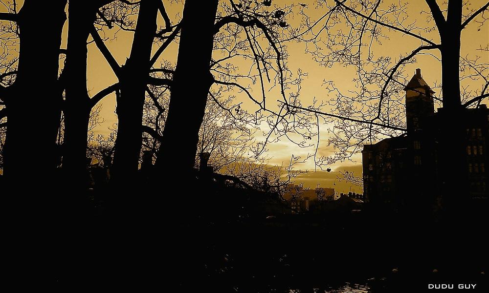 photoblog image Spooky Nights.
